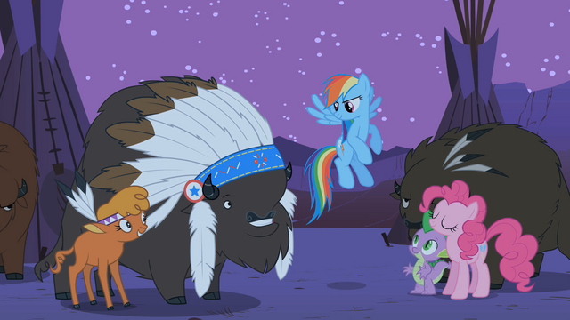 "File:Rainbow Dash ""we have some apple-picking Appleloosans to talk to"" S01E21.png"