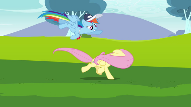 File:Rainbow Dash trying to convince Fluttershy S2E22.png