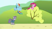 "Rainbow ""Yeah!"" S4E18"