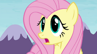 "Fluttershy ""Maud would move mountains for her"" S4E18"