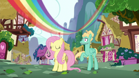 Rainbow streaks over Fluttershy and Zephyr S6E11