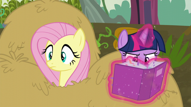 File:Twilight consulting the solution portfolio again S5E23.png