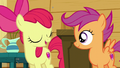 "Apple Bloom ""Exactly"" S6E4.png"