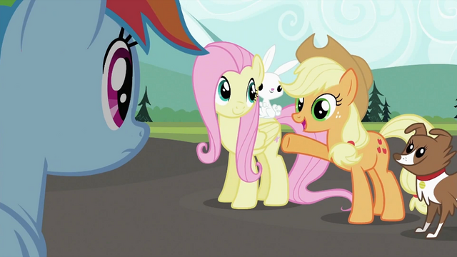 File:Applejack 'sure looks good' S2E07.png