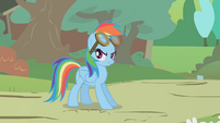 Rainbow with flying goggles S01E10