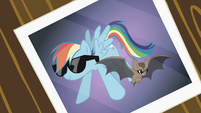 Picture of Rainbow Dash and the bat wearing sunglasses S2E07