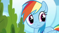 Rainbow Dash looks to her left S6E7