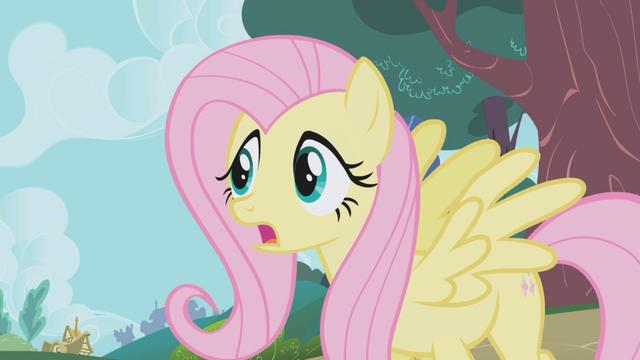 "File:Fluttershy ""Applejack, Winona, stop!"" S1E04.png"