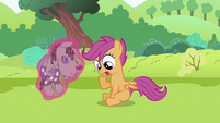 "Scootaloo ""But um"" S2E03"