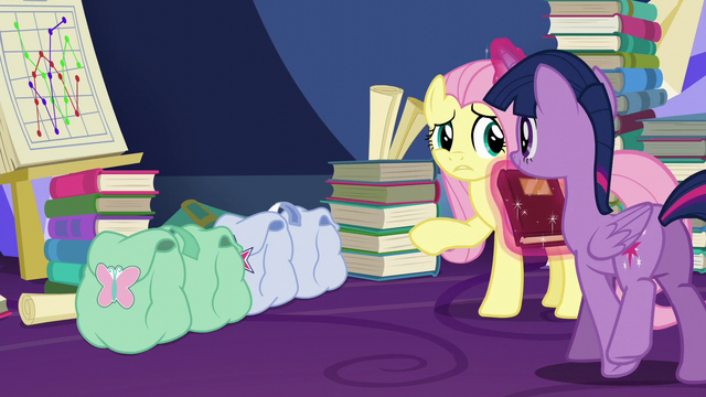 File:Twilight and Fluttershy's saddlebags S5E23.png