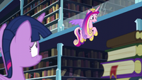 "Cadance ""I thought you were taking care of the baby!"" S6E2"