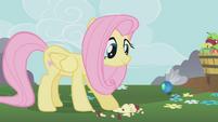 Fluttershy feeds a parasprite S01E10