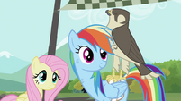 Fluttershy, Rainbow Dash and the falcon S2E07
