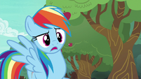 "Rainbow Dash ""distance bucking?"" S6E18"