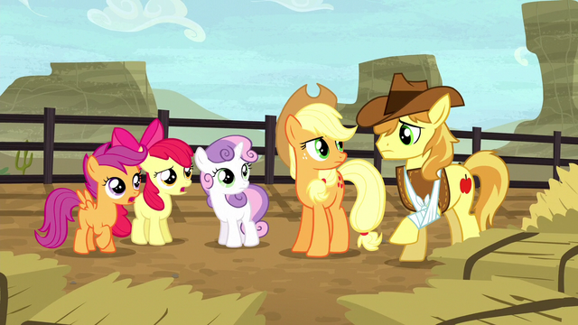 "File:Braeburn asking ""you fillies alright?"" S5E6.png"