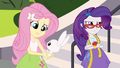 "Fluttershy ""all over again"" EG3.png"