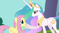 Celestia with hoof on Fluttershy's chin S03E10