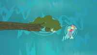 Granny Smith swimming beside the fallen tree S4E20
