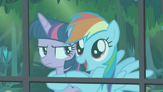 File:Rainbow talking about Caballeron S4E04.png