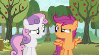 Scootaloo and Sweetie Belle nervous glance S5E4