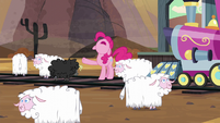 Pinkie curses the sheeps S5E11