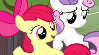 "Apple Bloom ""now's your chance"" S5E6"