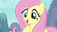"Fluttershy ""you speak my language too"" S4E16"