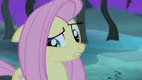 "Fluttershy ""yes I was or yes I wasn't"" S4E07"