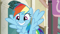 Rainbow Dash grinning wide S6E9
