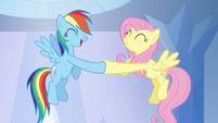 Rainbow Dash and Fluttershy hoof-bump S03E12