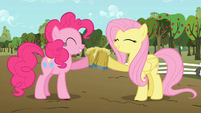 Pinkie Pie and Fluttershy celebrating with cider S02E15
