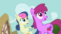 Sweetie Drops and Berryshine look at Rainbow Dash S2E8