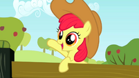 Apple Bloom wearing Applejack's hat 1 S2E14