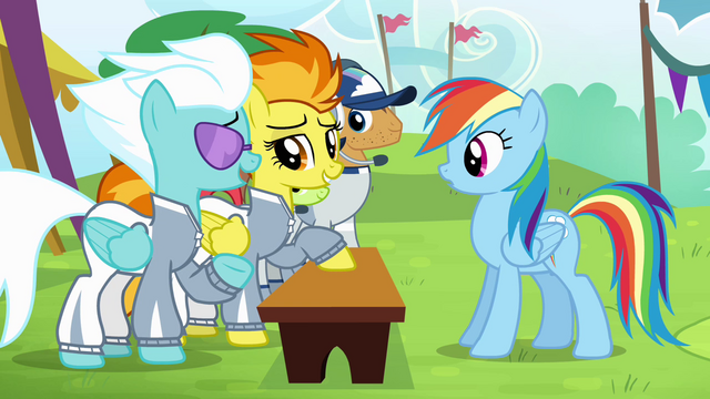 File:Spitfire and Fleetfoot learn their lesson S4E10.png