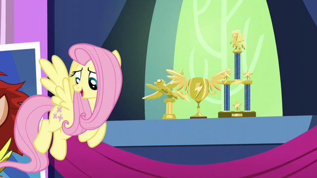 File:Fluttershy asks Rainbow about her trophies S5E3.png