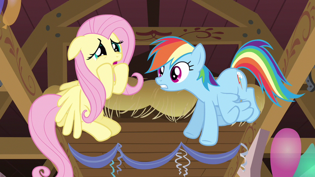 File:Rainbow Dash believing Fluttershy S2E14.png