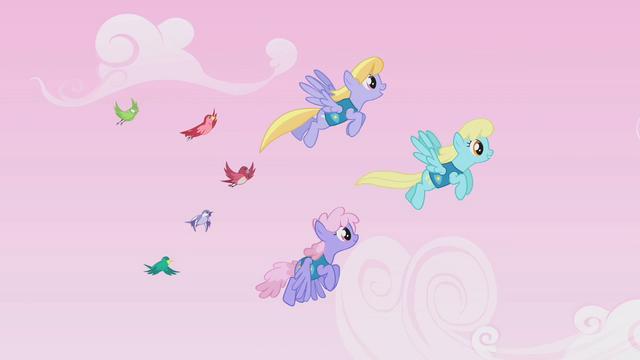 File:Cloud Kicker, Sassaflash, and Rainbowshine guiding birds S1E11.png
