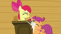 Scootaloo bumps into the lectern S6E4