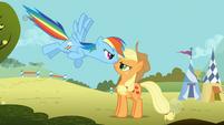 Rainbow Dash Applejack face-to-face 2 S1E13