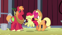 Apple Bloom being excited S5E17