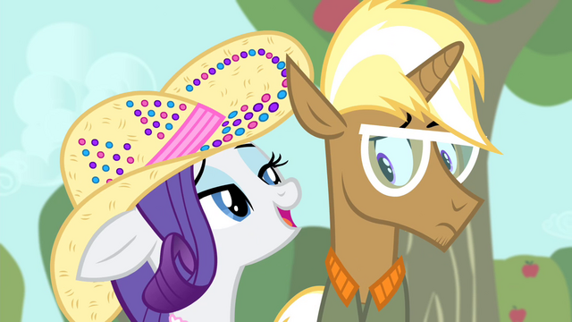 File:Rarity 'if you ask me' S4E13.png