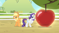 Rarity looks at her reflection S4E07