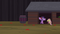 Twilight and Fluttershy take shelter from tomatoes S5E23