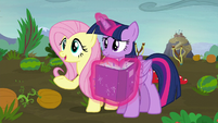 "Fluttershy ""what do you hope to get out of fighting?"" S5E23"