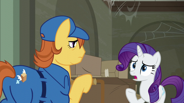 "File:Rarity ""it's completely disorganized!"" S6E9.png"