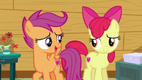 """Scootaloo """"trying to figure out your destiny"""" S6E19"""