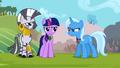 Trixie accepts a second duel S3E05.png
