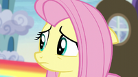 Fluttershy feeling sorry for Zephyr S6E11