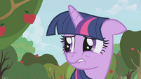 Twilight worried about Applejack S1E04