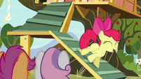 Apple Bloom blank flank all over again S5E4